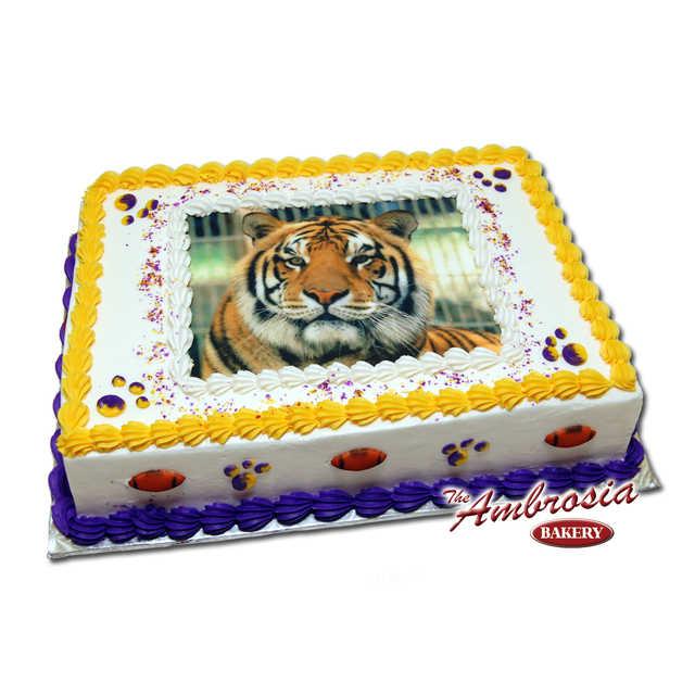 Our Favorite Tiger - (Number 2)