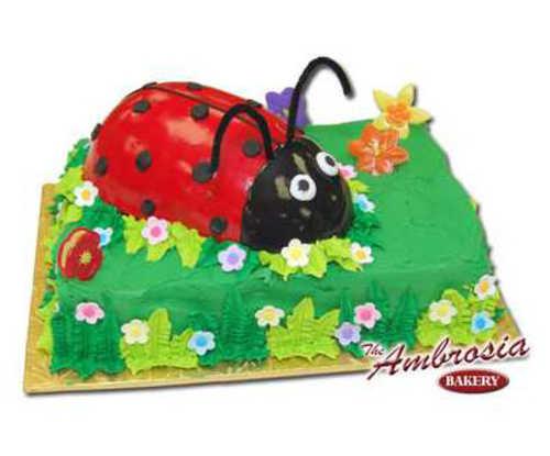 Ladybug with Petit Four Icing on Sheet Cake