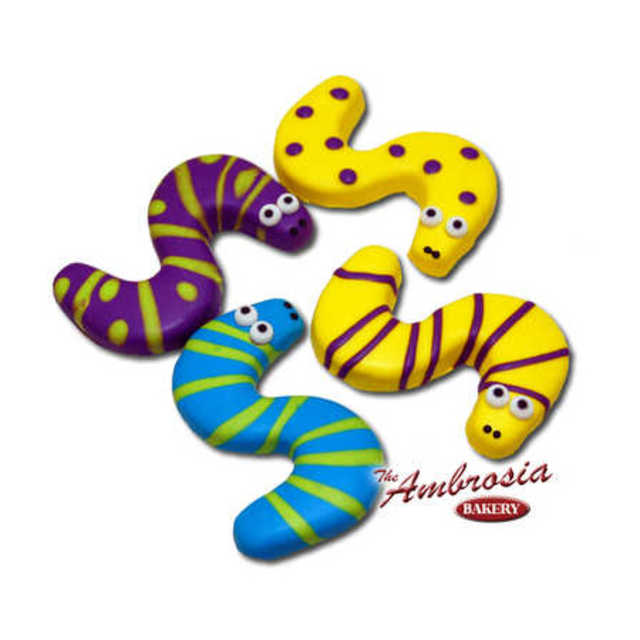 Decorated Snake Cut-Out Cookie