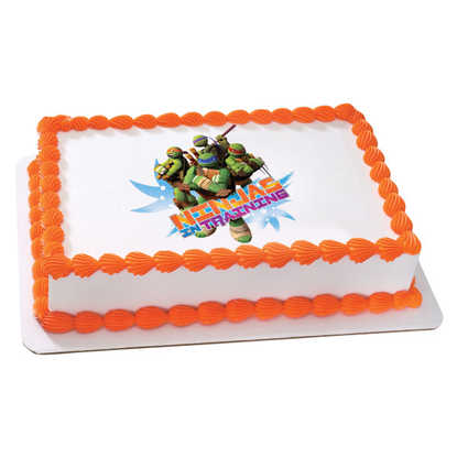 Teenage Mutant Ninja Turtles in Training PhotoCake® Image